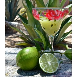 Margarita Roses: Hand Painted Glassware